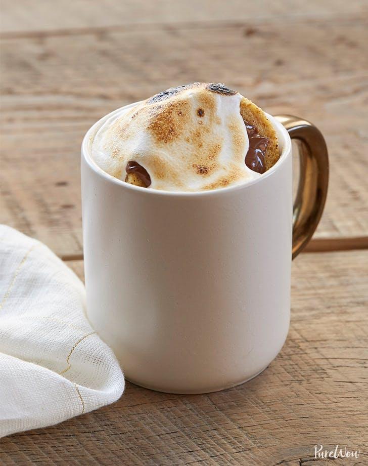 5 Minute S mores Mug Cake Recipe For One