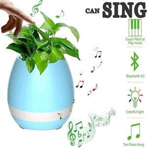 Saudeep India Trading Corporation Plastic Musical Pot