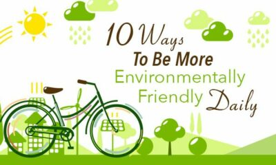 Top 10 Ways To Be Environmentally Friendly
