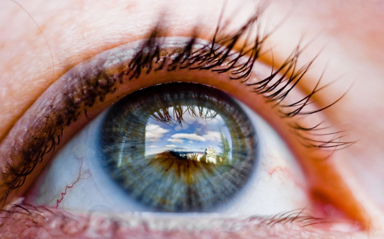 """How Forensic Scientists Once Tried to """"See"""" a Dead Person's Last Sight 