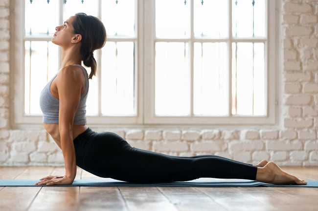 Great flexibility