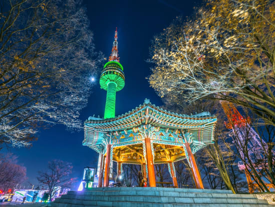 Seoul Han River Cruise with N Seoul Tower Visit and Dinner tours, activities, fun things to do in Seoul(Korea)|VELTRA
