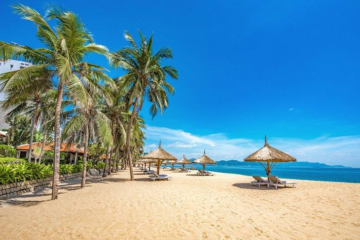 Beautiful palm-lined beach at Nha Trang