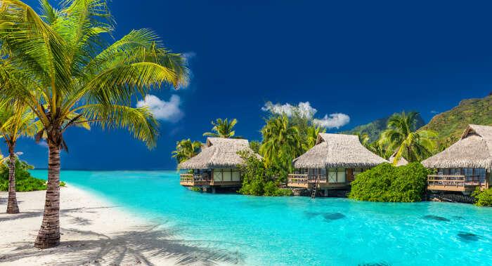 Cover-Fiji-In-December