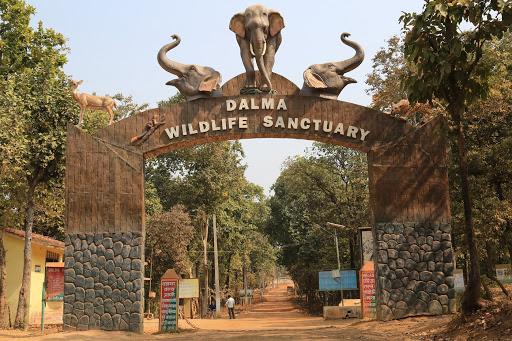 Dalma-wildlife-Sanctuary.