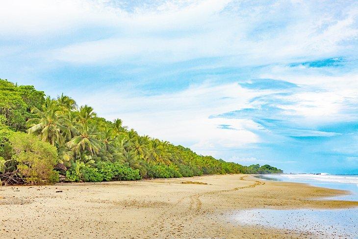 Deserted Montezuma beach