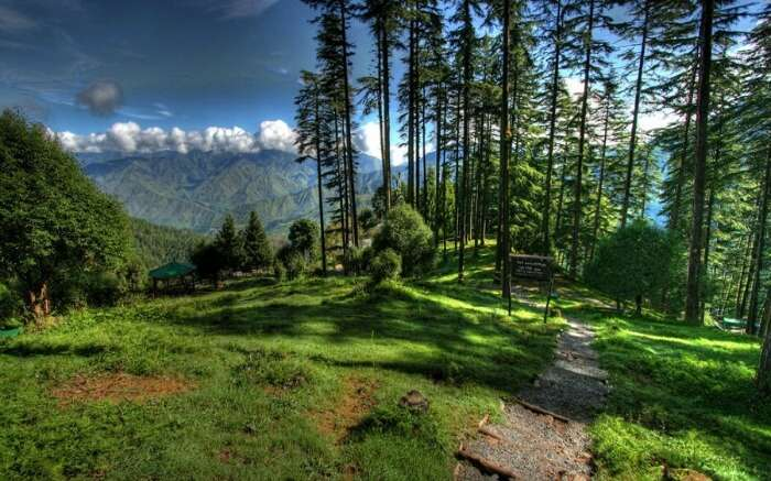 11 Updated Places To Visit In Dhanaulti (With Photos) In 2021!