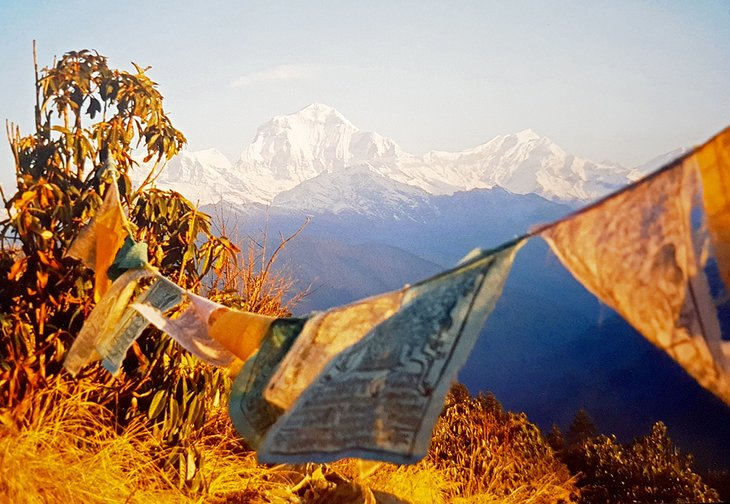 Early morning at Poon Hill, Annapurna Region