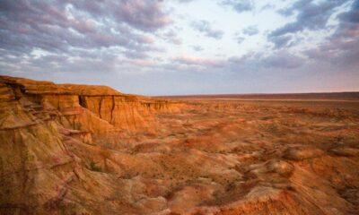 Top 10 Desert