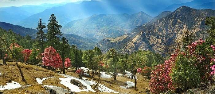 3 Days In Kausani : A Complete Guide For The Perfect Getaway