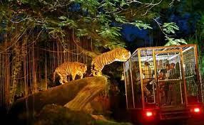 Night Safari Nocturnal Wildlife Park