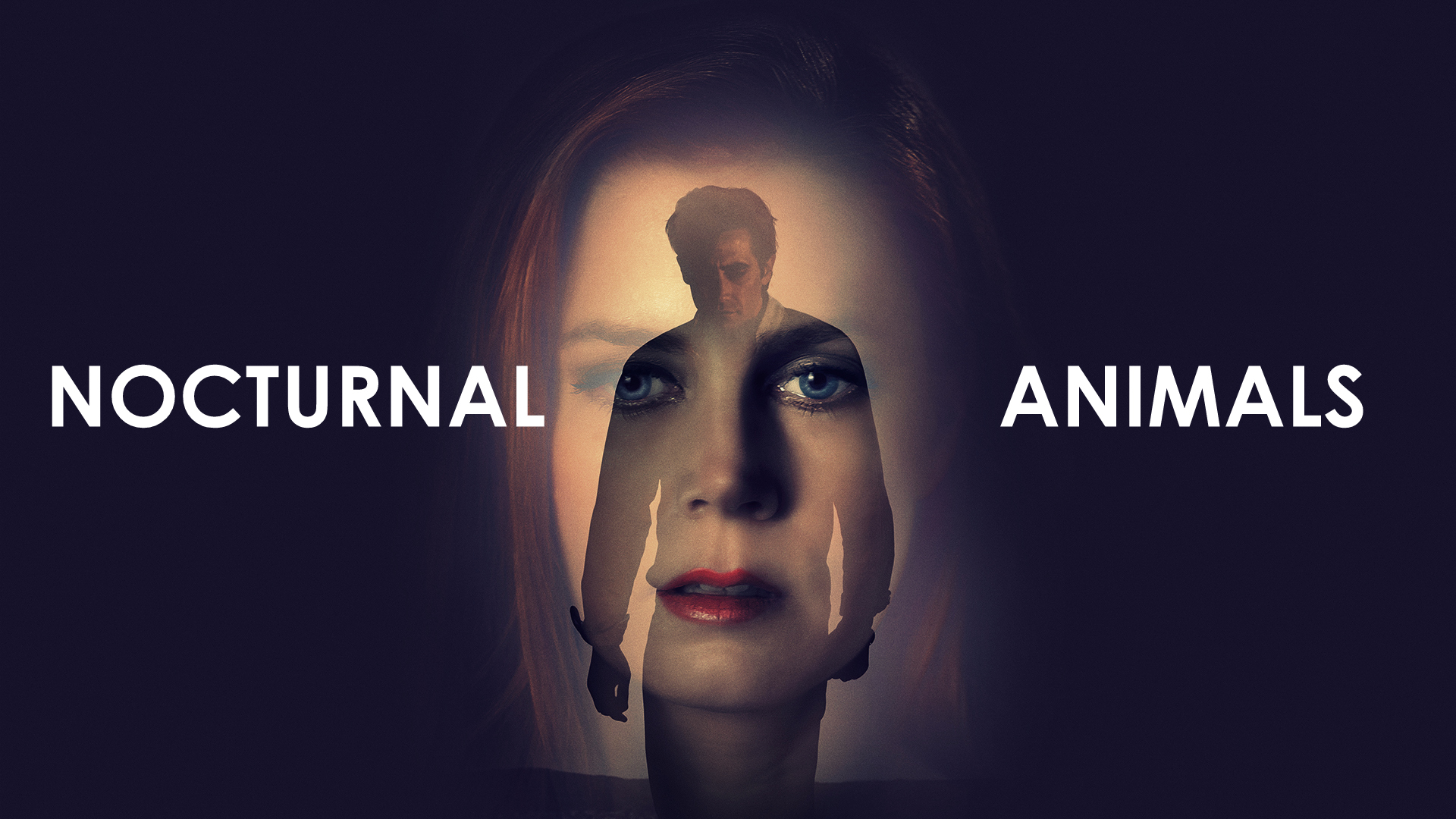 Nocturnal Animals Wallpaper