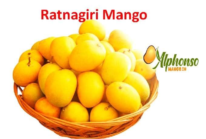Ratnagiri Mango