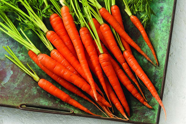 Carrots: Tracing this Vegetable's Roots | Food & Nutrition Magazine | Volume 9, Issue 1