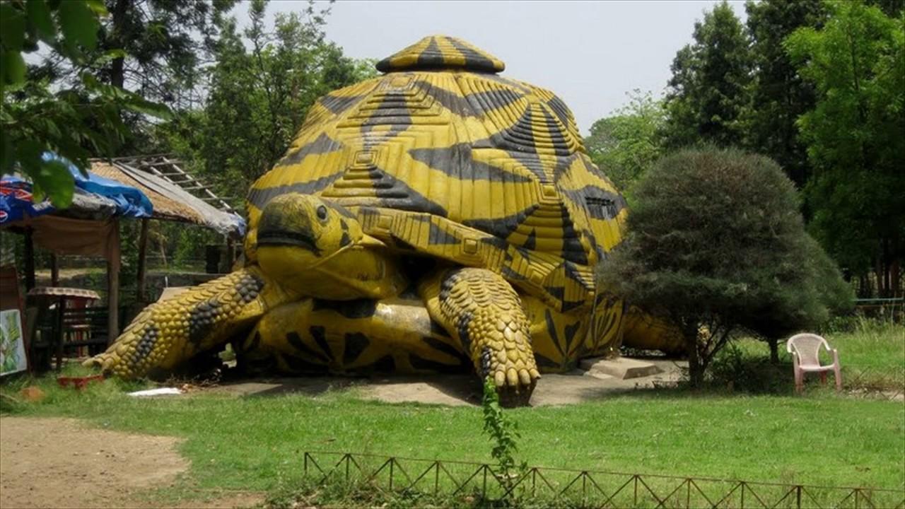 Tata-steel-Zoological-park.