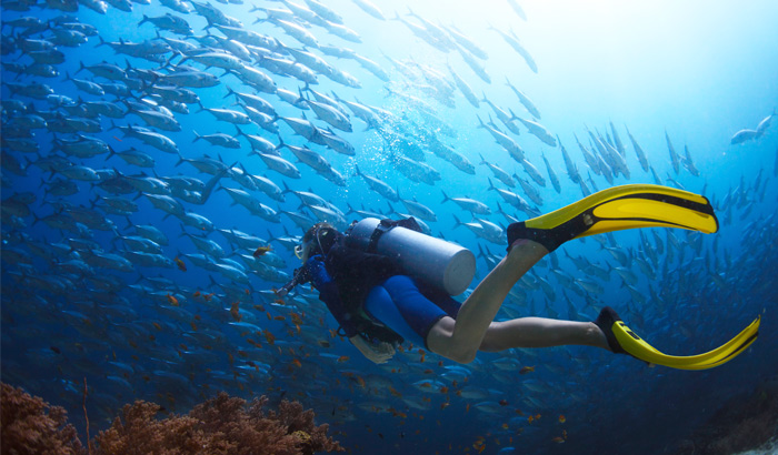 Temple-Adventures-Scuba-Diving-and-Surfing-India-Pondicherry