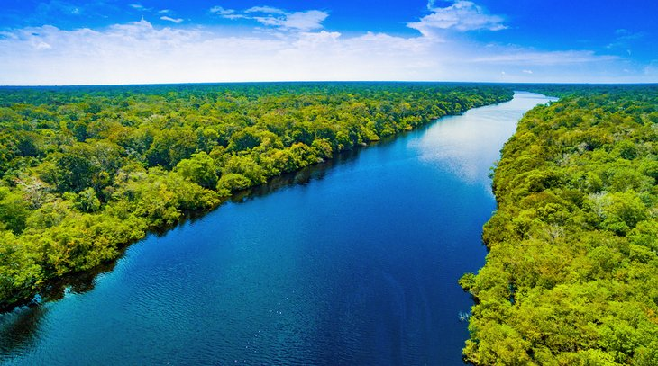 The Amazon River and rainforest in Brazil