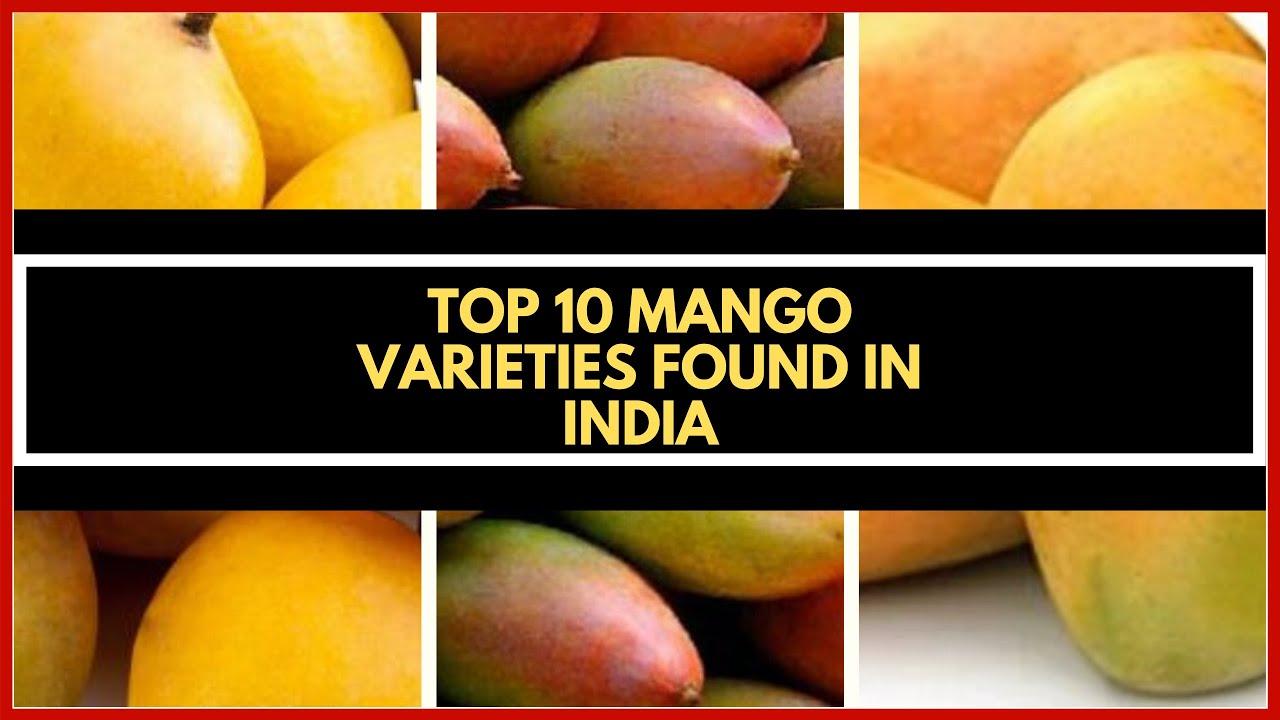 Top 10 varieties of Mango