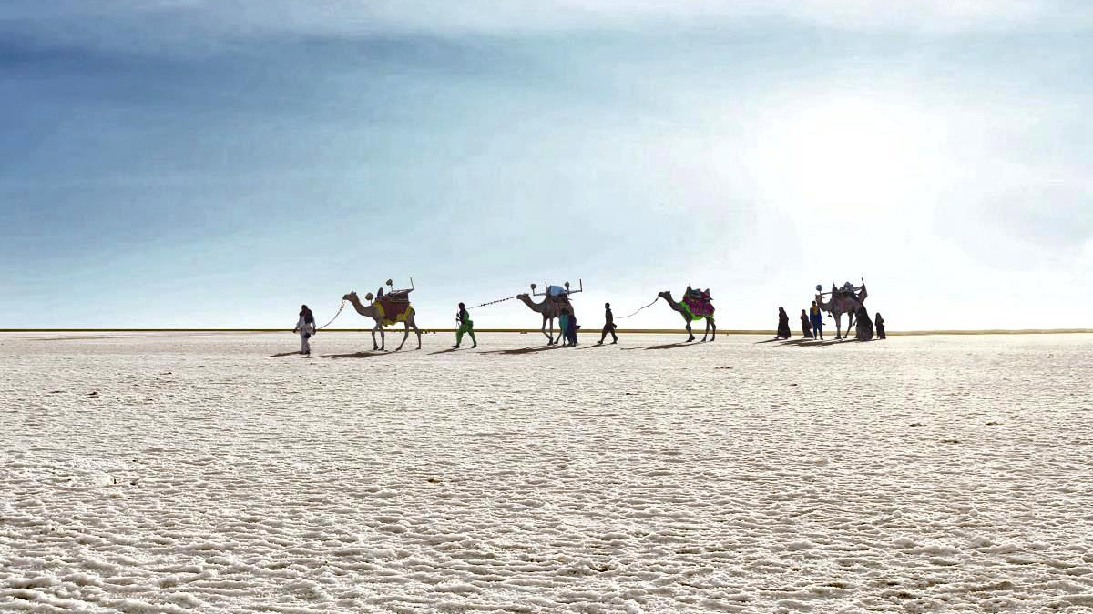 The Great Rann of Kutch : An Unforgettable Wonder of Gujarat