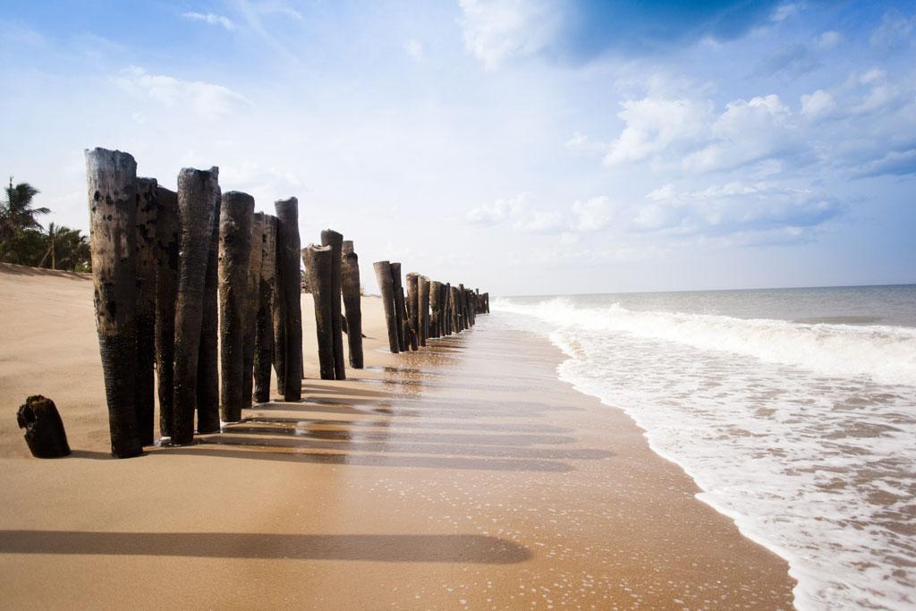 Wooden-posts-on-the-Pondicherry-beach.