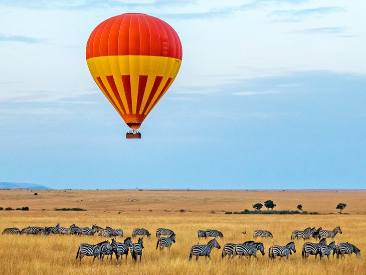 Zebras and a hot air balloon on the Serengeti