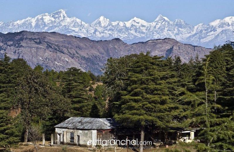 Abbott Mount Hill Station Uttarakhand - Abbott Mount Travel Guide, Tips