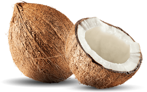 A Grade Solid Coconut, Packaging Size: 10 Kg, Coconut Size Available: Large, Rs 40 /kilogram | ID: 21599297155