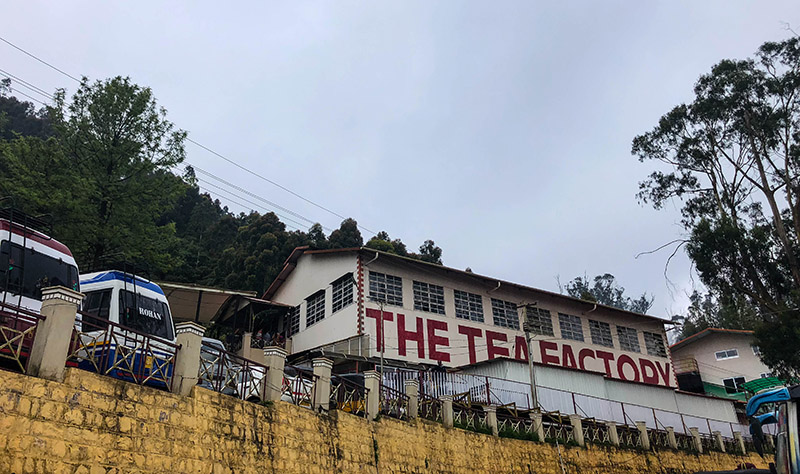 Visit to Ooty's Dodabetta Tea Factory | Backpacking with my Lens