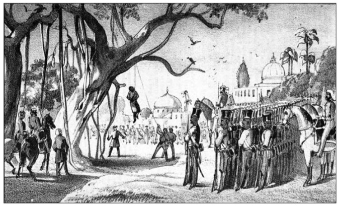 The trees of life that became agents of death | Under The Banyan