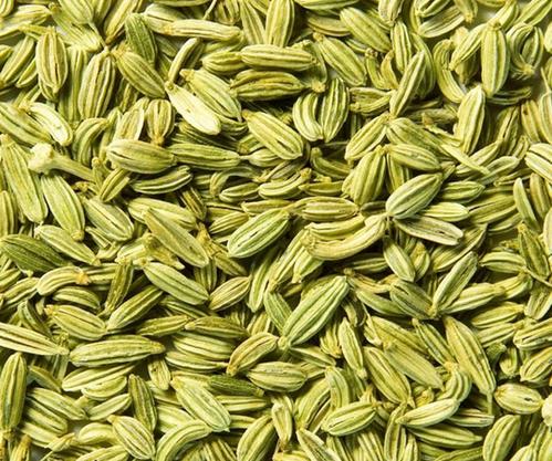 Fennel Seeds, Saunf Beej, सौंफ का बीज in Maruti Industrial Estate, Surat , Elite Exim | ID: 17329240697