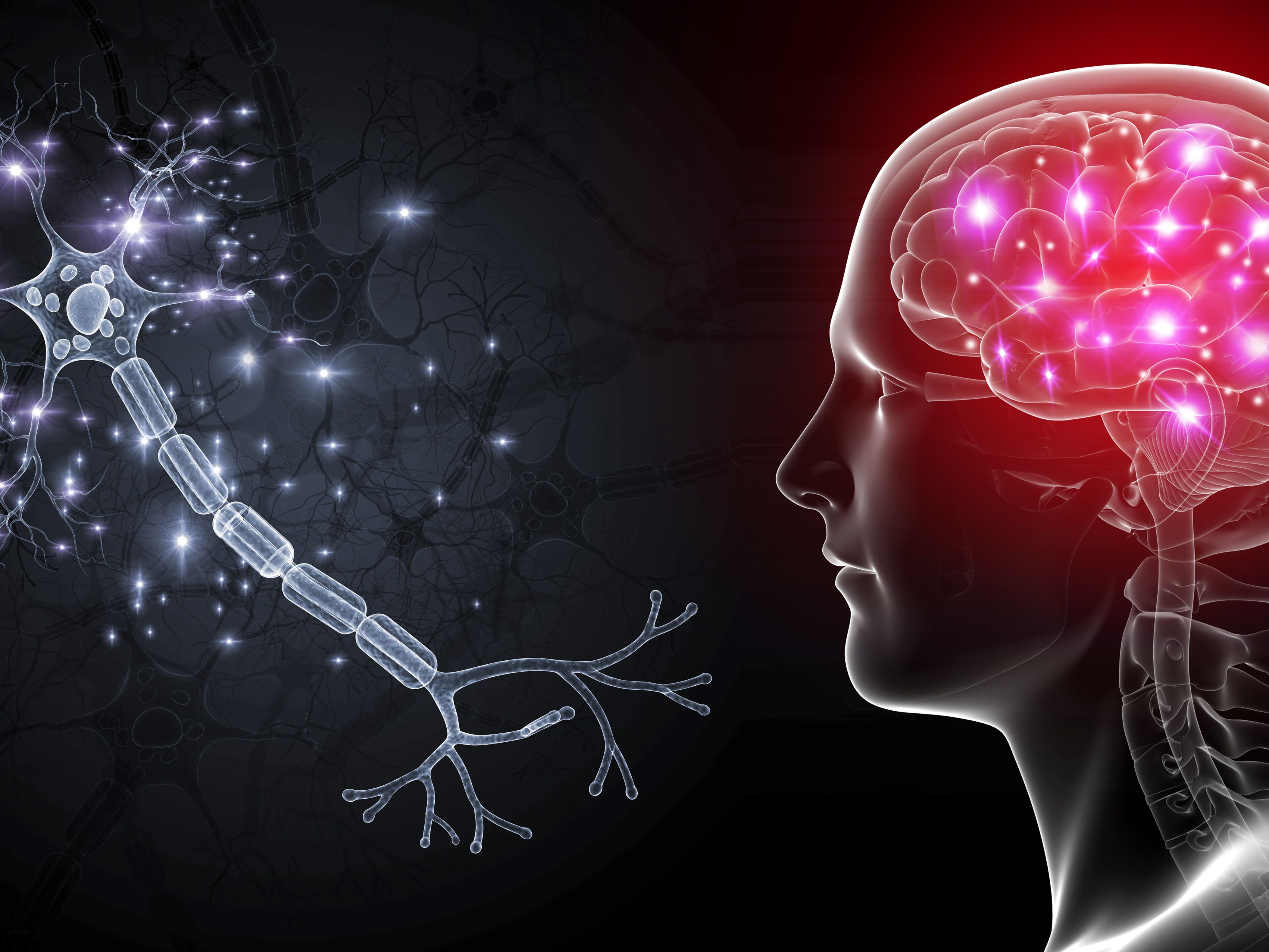 How Brain Cells Communicate With Each Other