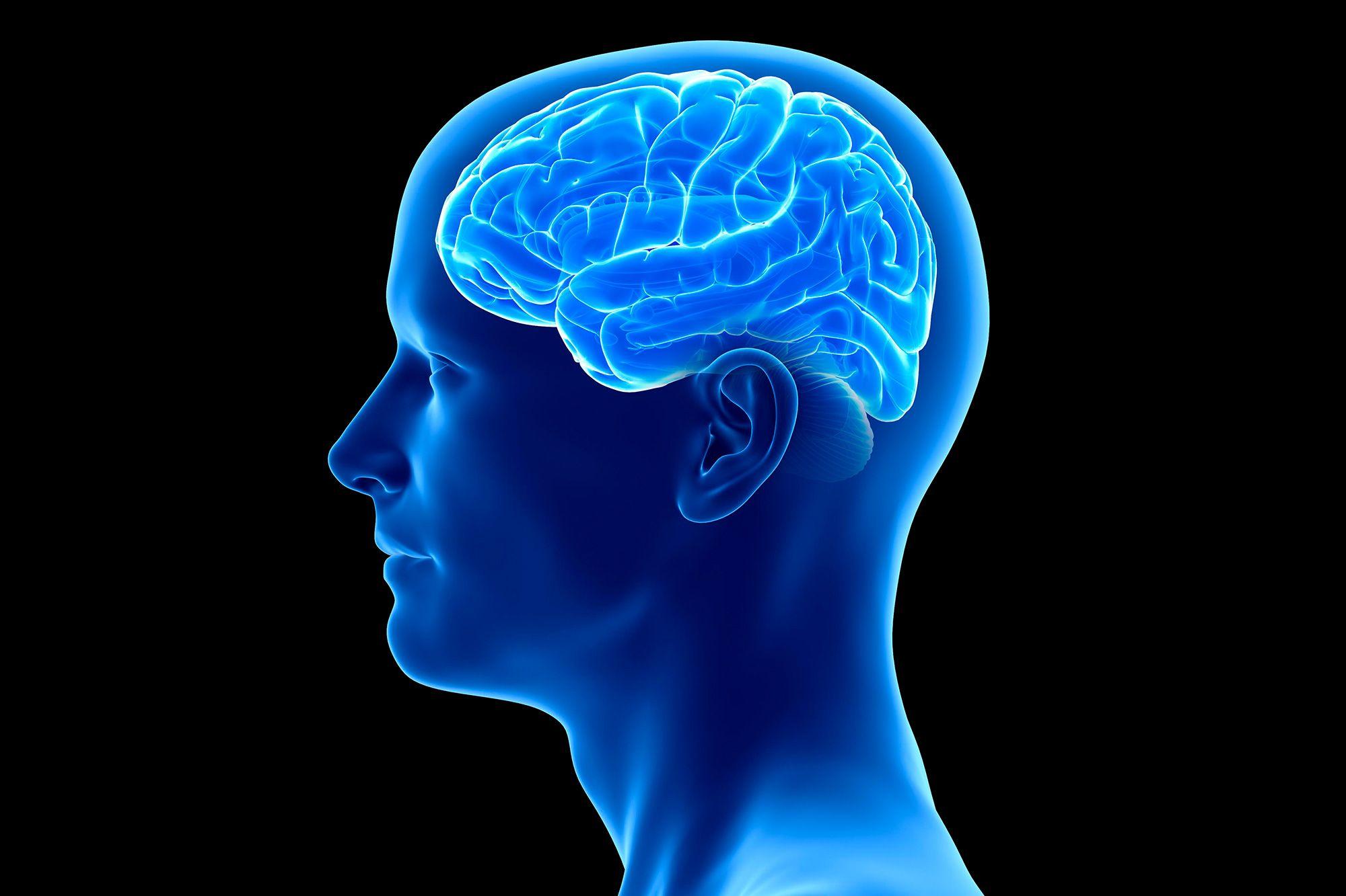 Coronavirus can the brain and replicate, new study claims