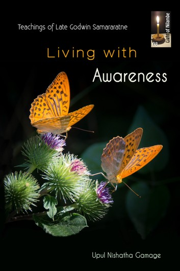 Living with greater awareness