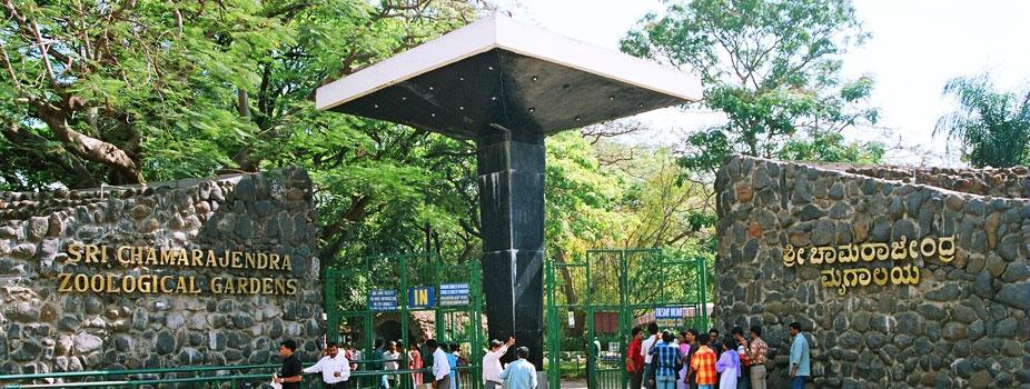 Mysore Zoo Mysore, India   Best Time To Visit Mysore Zoo