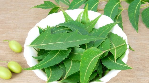 10 Wonderful Benefits and Uses of Neem: A Herb That Heals - NDTV Food