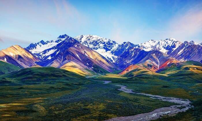 Denali National Park: An Absolute Guide For All Travelers