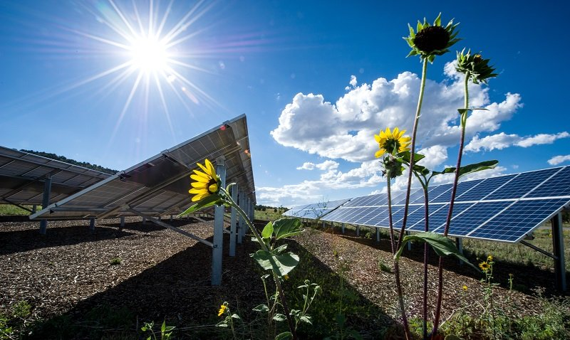 What Can Solar Do for You | Department of Energy