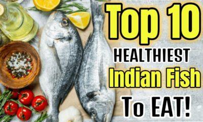 top-10-healthiset-indian-fish.