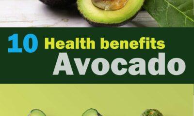 Top 10 Health Benefits Of Avacado